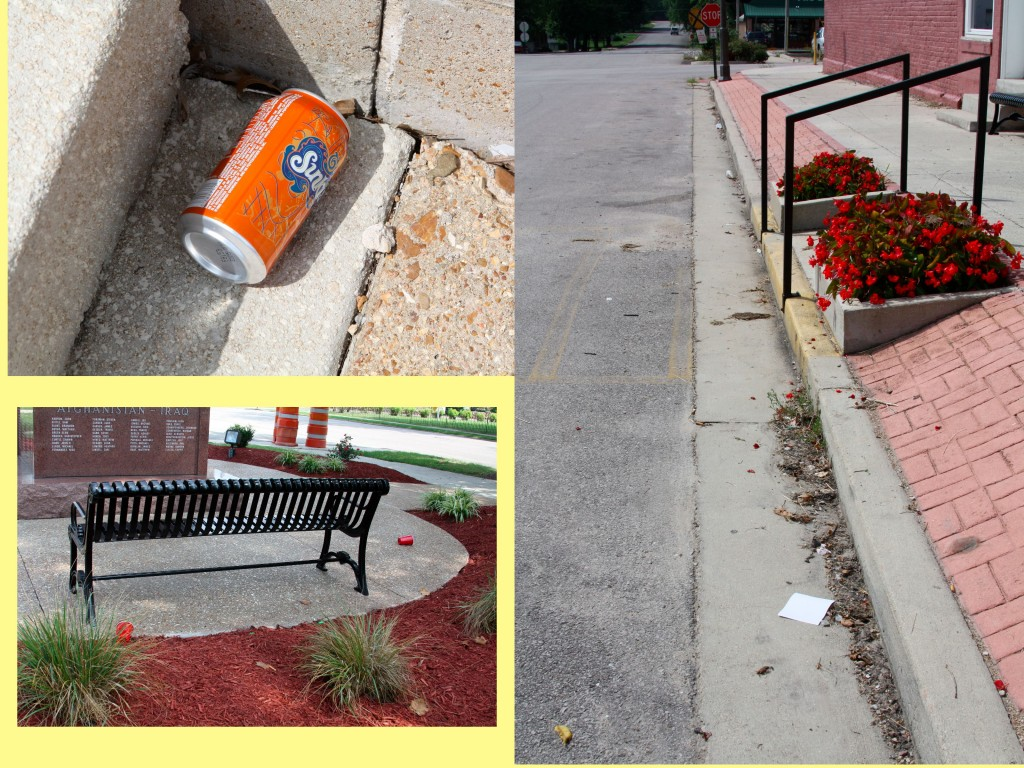 Despite local beautification, some still litter.
