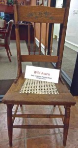 Wild Acorns Oak Chair
